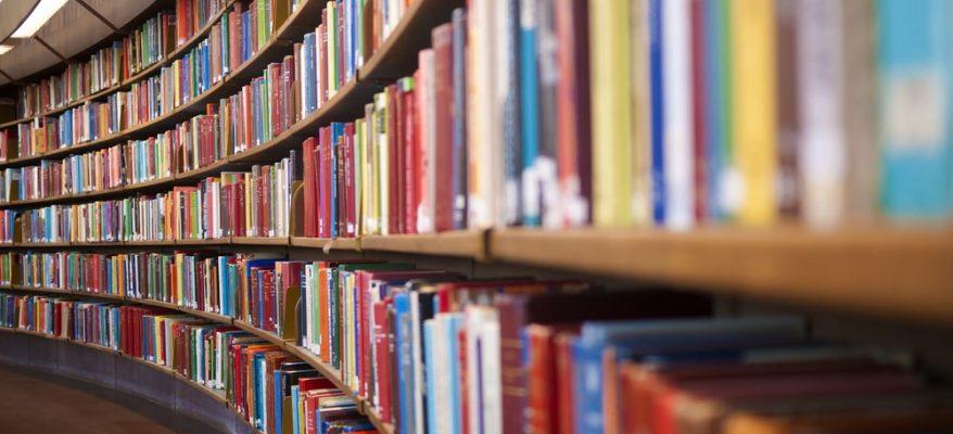 quanto guadagna un bibliotecario